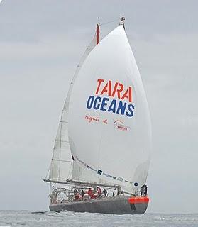 TARA OCEANS ANTES DE PARTIR A LA ANTÁRTIDA