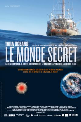 TARA OCEANS EXPEDITIONS - LA ENTREVISTA A MICHAEL PITIOT DIRECTOR DE LAS CUATRO DOCUMENTALES DE LA AVENTURA CIENTÍFICA DEL SIGLO 21 -